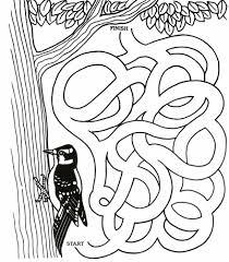 canku ota july 31 2004 bishinik the little chahta news bird