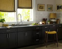 Kitchen Cabinet Depot Dark Shaker Kitchen Cabinets Mapo House And Cafeteria