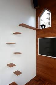 Wooden Wall Shelves Design by Wall Shelves Design Creative Cat Wall Shelves Ikea Shelves