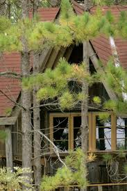 Amazing Tree Houses by 368 Best Amazing House U0027s Tree House Tower Castle Haunted House U0027s