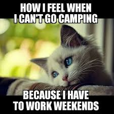 I Work Weekends Meme - meme depressed cat working weekends woodland gear