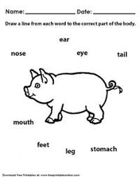 english teaching worksheets animal body parts roman numerals
