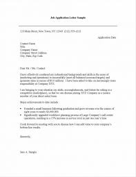 Premade Resume Build A Resume Free Download Resume Ideas