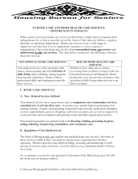nursing home business plan ppt care examples one page template by