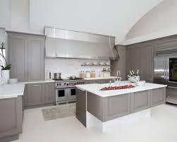 pewter kitchen faucet kitchen ideas silver kitchen faucet silver kitchen plinth silver