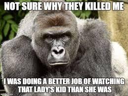 Funny Gorilla Meme - the best funny web memes of 2016