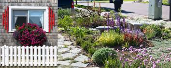 Front Curb Appeal - 10 ways to add instant curb appeal to your front garden garden