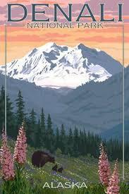 brilliant colors of denali national park alaska wallpapers 695 best spectacular alaska images on pinterest alaska travel