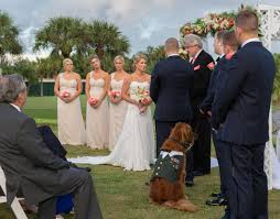 his and wedding a wounded warrior s dog was the best at his wedding fox news