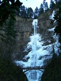 Multnomah Falls Map Free Images Tree Forest Winter Park Body Of Water Water