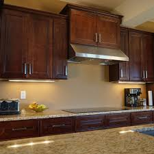 Moulding Kitchen Cabinets Delectable 60 Kitchen Cabinets Moulding Decorating Design Of