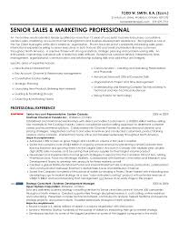 professional marketing resume todd w smith senior sales marketing professional resume