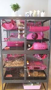 halloween cage decorations hamster diy youtube best 20 rat cage ideas on pinterest rat rat ferret cage and