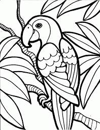 free bird coloring pages printable bird coloring pages songbirds