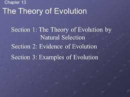 chapter 13 the theory of evolution section 1 the theory of