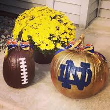 notre dame football pumpkins pumpkins pinterest notre dame