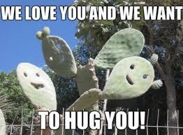 We Love Meme - meme 2014 friendly cactus