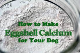 ground eggshells how to make eggshell calcium for your dog