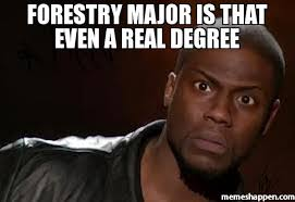 Meme Degree - forestry major is that even a real degree meme kevin hart the