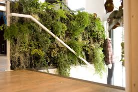 Wall Planters Indoor by Indoor Green Wall Vertiss Plus Bar Idolza