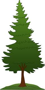 pine tree free clip free clip on
