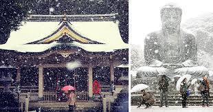 november tokyo tokyo which hasn t seen november snow in over 50 years surprised