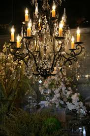 Home Lighting by 145 Best Chandeliers Images On Pinterest Crystal Chandeliers