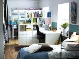 Studio Room Divider Bookcase Ikea Room Dividers Studio Apartment Creative Room