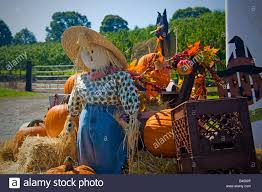 thanksgiving scarecrow sitting on a hay bail with
