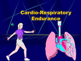 ppt cardio respiratory endurance powerpoint presentation id 305440