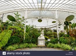 Botanic Gardens Uk Inside Kibble Palace Glasgow Botanical Gardens Scotland Uk