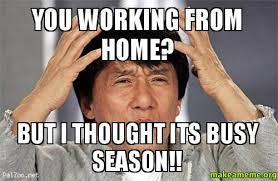 Working From Home Meme - you working from home but i thought its busy season make a meme