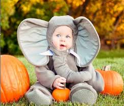 Baby Lion Costume 11 Best Animals Costumes Disfraces De Animales Images On