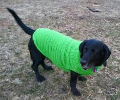 crochet pattern for dog coat crocheted dog sweater pattern a place for learning