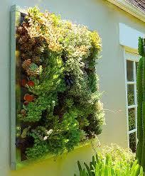 best 25 wall gardens ideas on pinterest vertical gardens