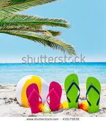 flip flops palm tree by sea stock photo 418175017