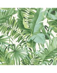 tropical leaf wallpaper palm tree white green a street prints