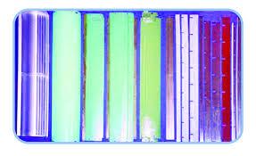 carding comb sparetex suppliers
