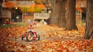 45 autumn wallpapers