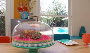11 diy terrariums for a greener living space full home living