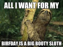 Sloth Meme Images - funny best birthday sloth meme image quotesbae