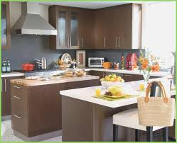 Choosing Kitchen Cabinet Colors Some Factors Choosing Kitchen Color Schemes U2013 Webbird Co