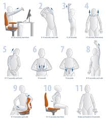 Office Chair Workout Office Chair Exercises Home Chair Decoration