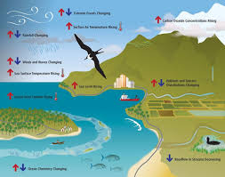 pacific region map pacific region national centers for environmental information