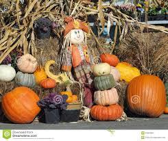 thanksgiving season thanksgiving produce display stock images image 34654884