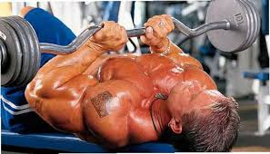 bench routines triceps advanced routine lee priest bodybuilding routines