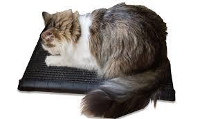 Cat Scratchers Cardboard Best Cat Treadmill Sisal Cat Scratcher