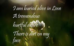 quote love hurt love hurts wallpapers