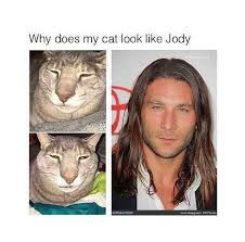 Meme From Shameless - shameless us meme cat looks like jody on bingememe