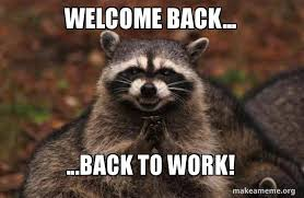 Back To Work Meme - welcome back back to work evil plotting raccoon make a meme